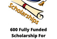 Photo of 600 Fully Funded Bachelors, Masters & Ph.D. Scholarships For International Students 2021