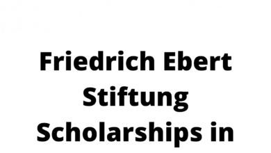 Photo of Friedrich Ebert Stiftung Scholarships in Germany – Fully Funded