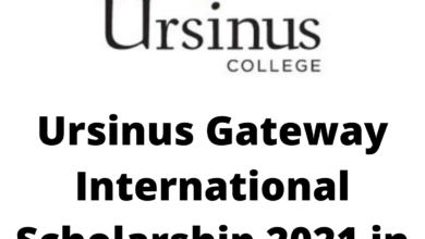 Photo of Ursinus Gateway International Scholarship 2021 in the United States – Funded