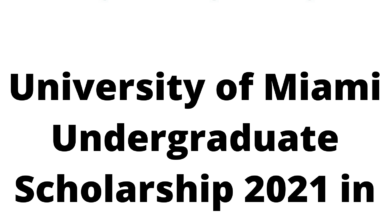 Photo of University of Miami Undergraduate Scholarship 2021 in the USA – Fully Funded