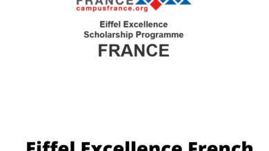 Photo of Eiffel Excellence French Government Scholarship 2021 – Fully Funded