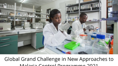 Photo of Global Grand Challenge in New Approaches to Malaria Control Programme 2021