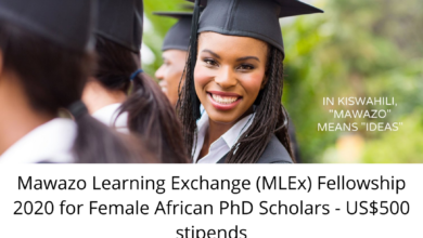 Photo of Mawazo Learning Exchange (MLEx) Fellowship 2020 for Female African PhD Scholars – US$500 stipends