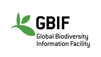 Photo of Global Biodiversity Information Facility (GBIF) Young Researchers Awards 2021 – €5,000 prize