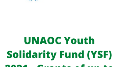 Photo of UNAOC Youth Solidarity Fund (YSF) 2021 – Grants of up to USD 25,000
