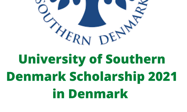 University of Southern Denmark Scholarship