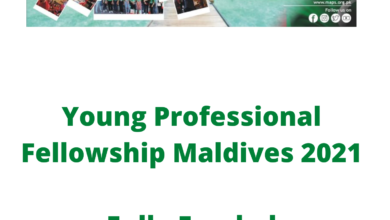Photo of Young Professional Fellowship Maldives 2021 – Fully Funded