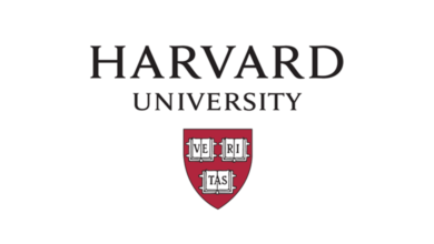 Photo of Mobile App Development Course at Harvard University