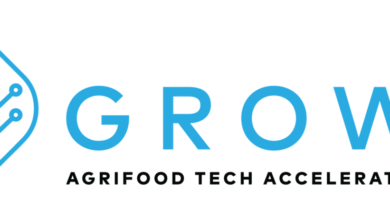 Photo of GROW Impact Accelerator 2021
