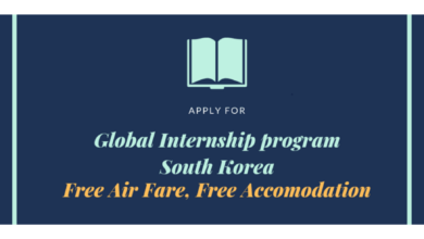 Photo of Global Internship Program 2021 in South Korea – Fully Funded