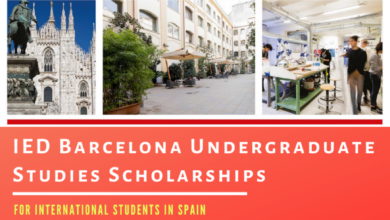 Photo of IED Barcelona Undergraduate International Scholarships in Spain, 2021 – Funded