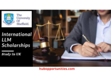 Photo of University of Sheffield International LLM Scholarships in the UK – Funded
