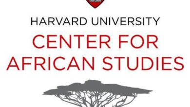 Photo of HARVARD UNIVERSITY POSTDOCTORAL RESEARCH FELLOWSHIP PROGRAM